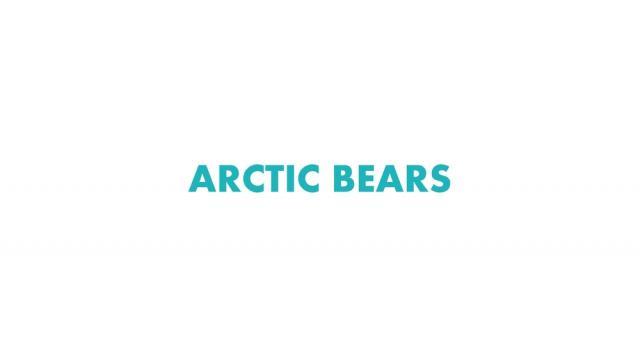 Крылова Елена – ARCTIC BEARS
